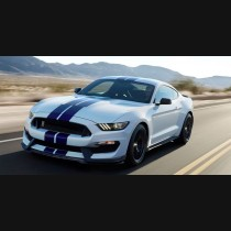 Ford Mustang GT350 Shelby Body Kit Without Side Fenders 2014 - 2017